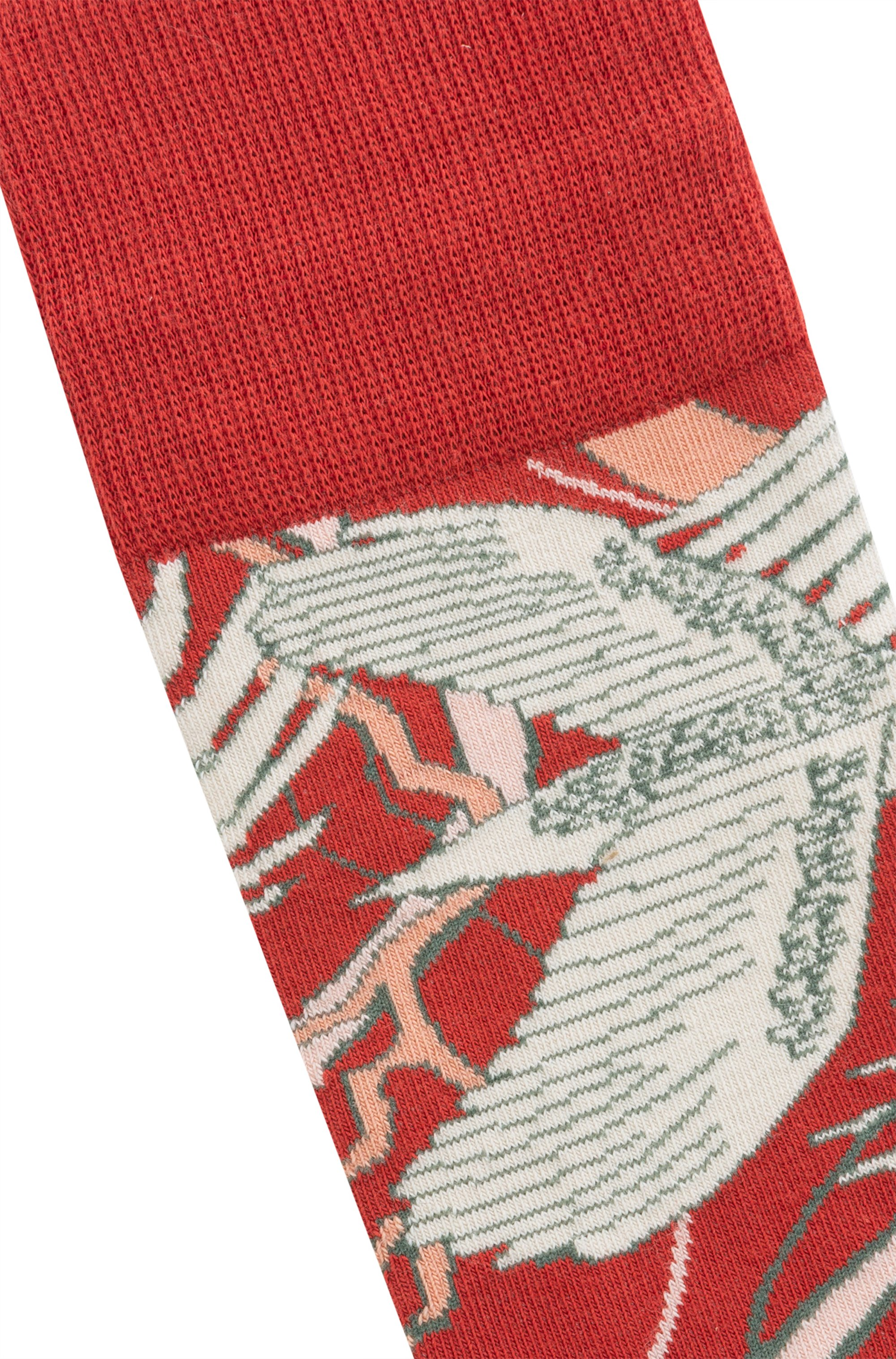 Regular-length socks with Japanese-crane motif